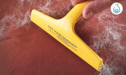 كيف أنظف السجاد من الشعر, تنظيف السجاد الشعر على الناشف, السجاد يطلع وبر, مشاكل السجاد, كيف انظف السجاد, وبر السجاد الصوف, طريقة تنظيف السجاد بالملح, تنعيم السجاد, تنظيف السجاد الشاج